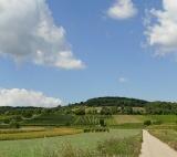 Weg Breitenbrunn