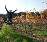Weingartensprung